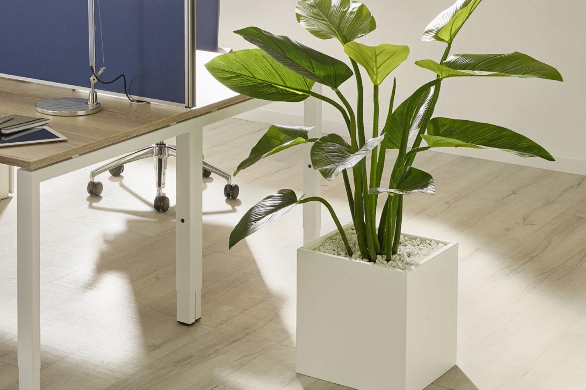 Büropflanze Kunstpflanze auf Boden vor Schreibtisch