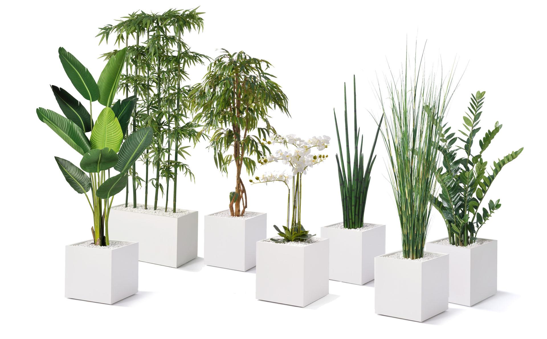 Büropflanze Kunstpflanze Zusammenstellung
