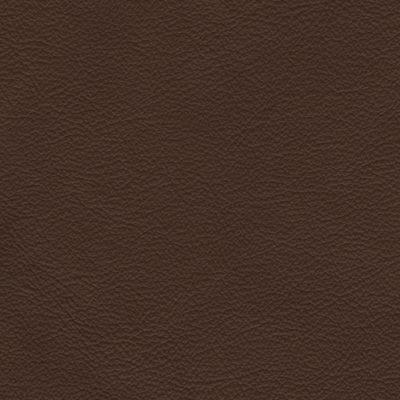 Stoffe Stühle Leder Braun 830