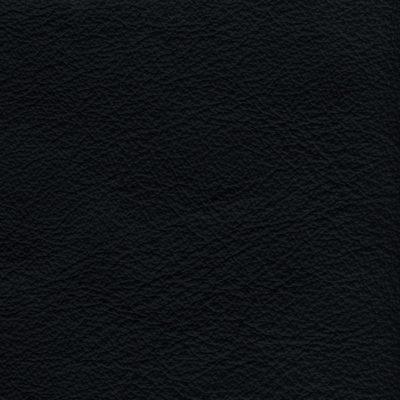 Stoffe Stühle Leder Schwarz 820
